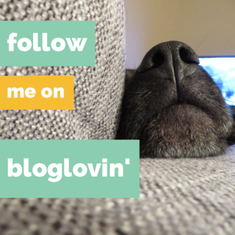 Follow The Cheerful Times on Bloglovin'