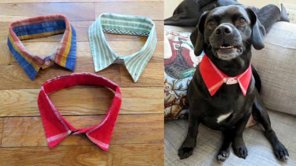 DIY Dog Collar Upcycled Dress Shirt - No Sew | The Cheerful Times