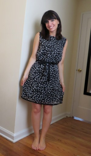 Stitch Fix Smash Rikki Bird Print Dress